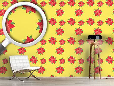 Pattern Wallpaper Poinsettia In Bloom