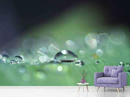 Photo Wallpaper Drops of water in XXL