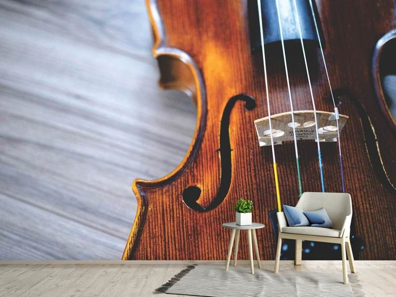 Photo Wallpaper Close up violin 2