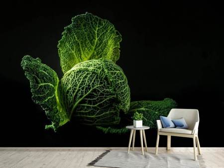 Fotobehang The cabbage