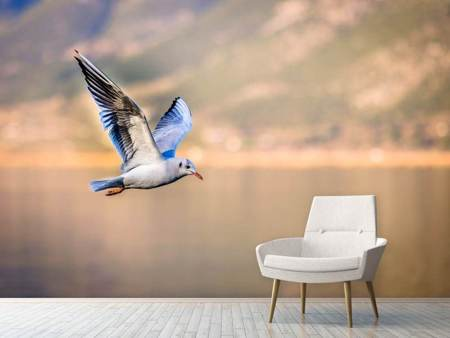 Photo Wallpaper The flying seagull