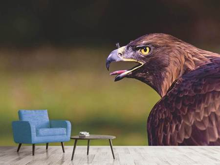 Photo Wallpaper Watchful eagle