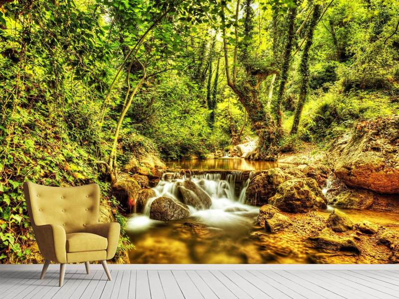 Fotobehang Waterfall In The Forest