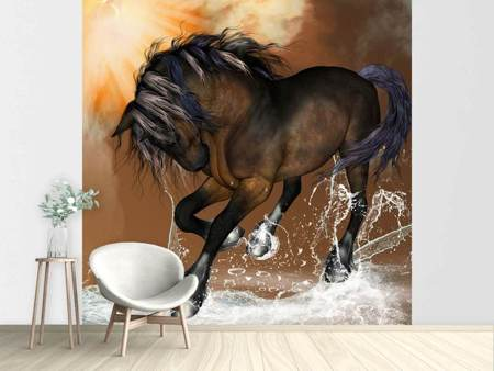 Photo Wallpaper Black Beauty
