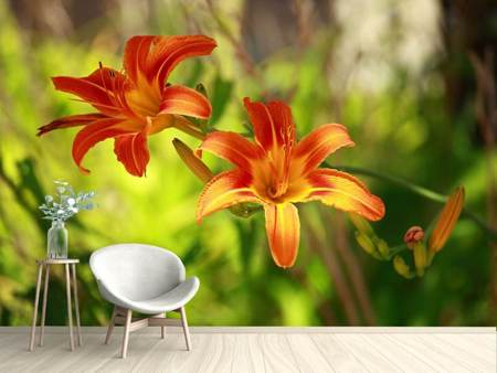Photo Wallpaper Lilies In Nature